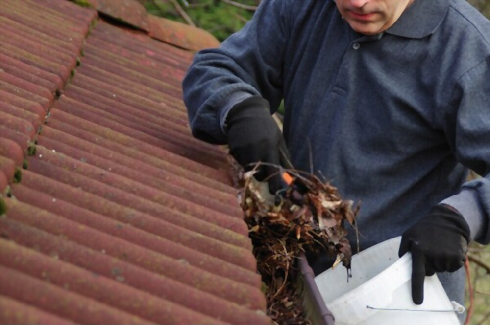 Gutter Cleaning Ridgefield