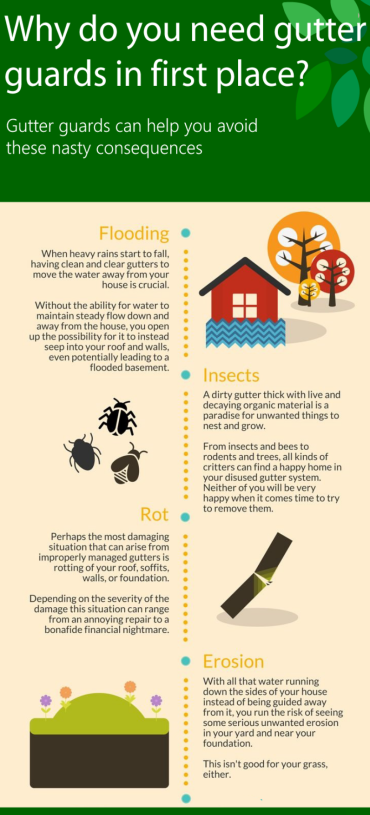 Why do you need gutter guards in first place infographic by Largo Gutter Pros