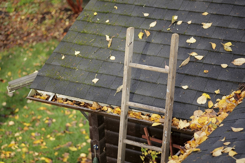 Gutter Cleaning Before Winter